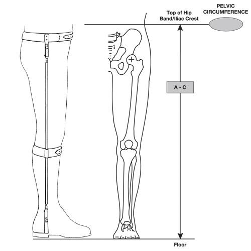 Bilateral Hip-Ankle Torsion Splint