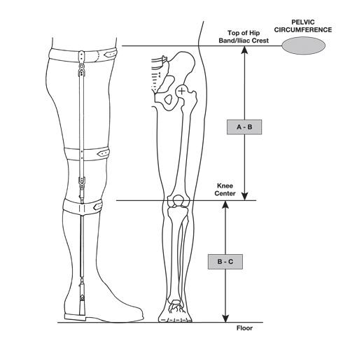 Bilateral Hip-Knee-Ankle Torsion Splint
